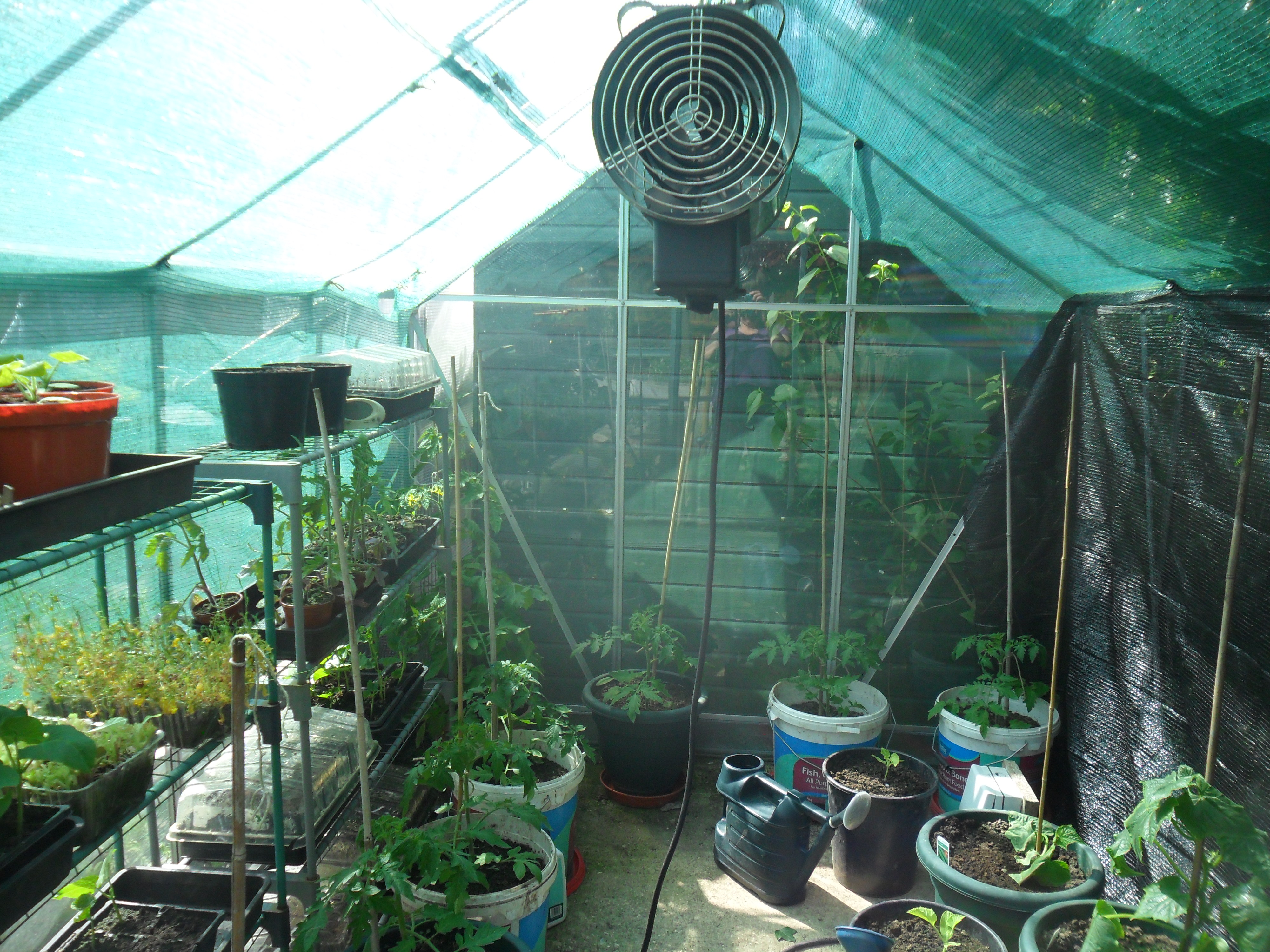 the essential garden jobs for june the handy mano manomano shade shading greenhouse plants summer
