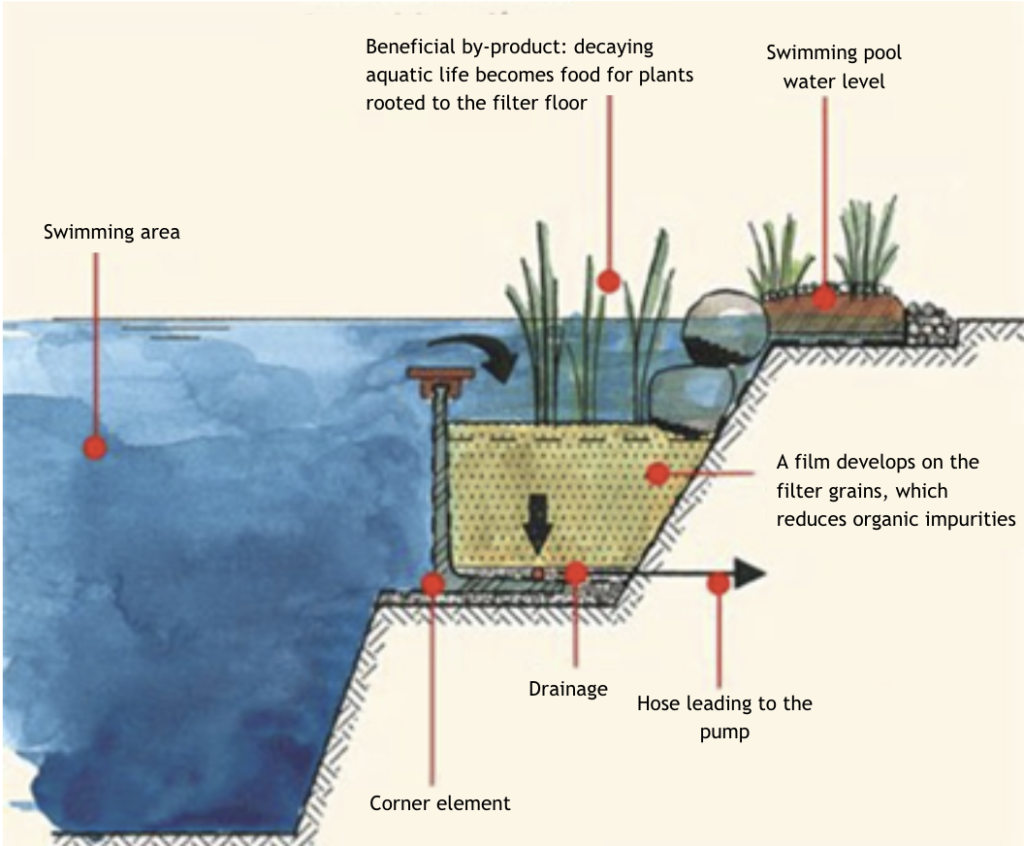 Configure the filtration and swimming area of your pool