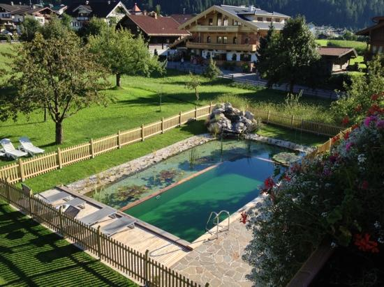 Choose the right shape for your pool