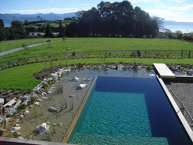 Build your very own natural swimming pool