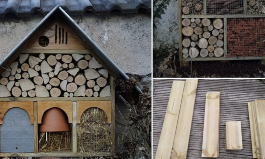 DIY Insect Hotel: A simple step-by-step guide