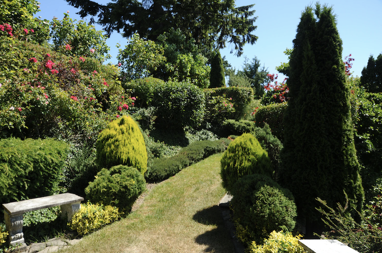 Hedges provide luscious privacy