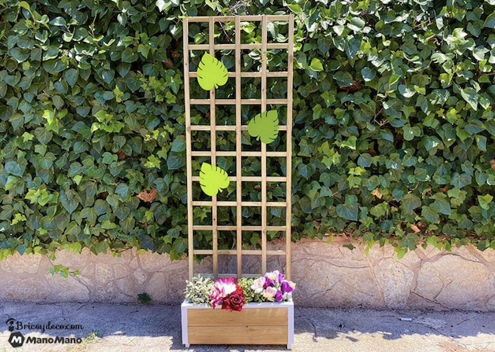 Outdoor Privacy Screen: DIY in 5 clever steps